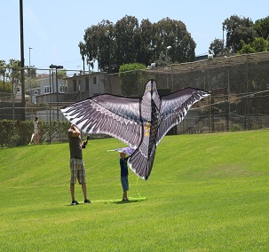 CANCELLED-Go Fly a Kite Day